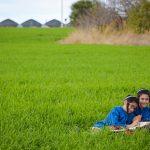 צילום ילדים: נועה מהאצרי