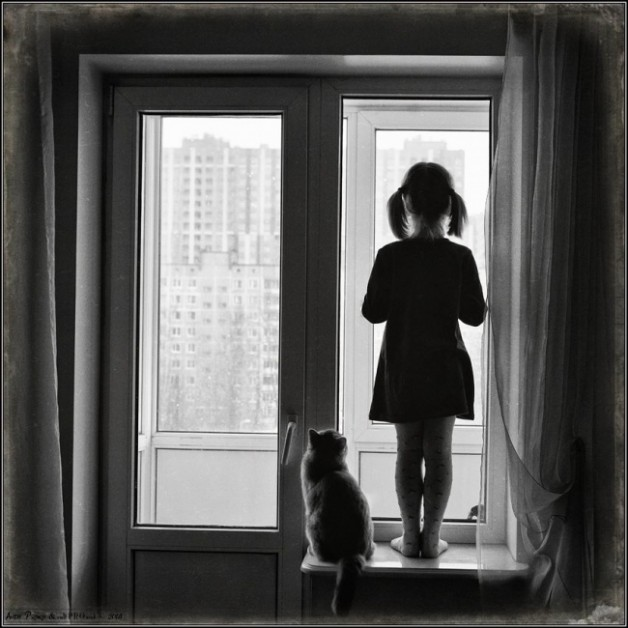 ילדה ושני חתולים
